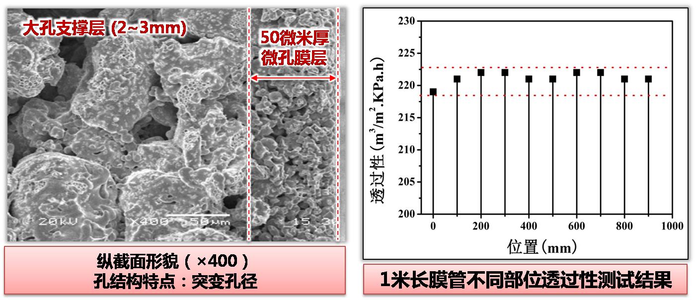 膜管微观组织与性能.jpg
